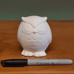 Tiny Tot Owl