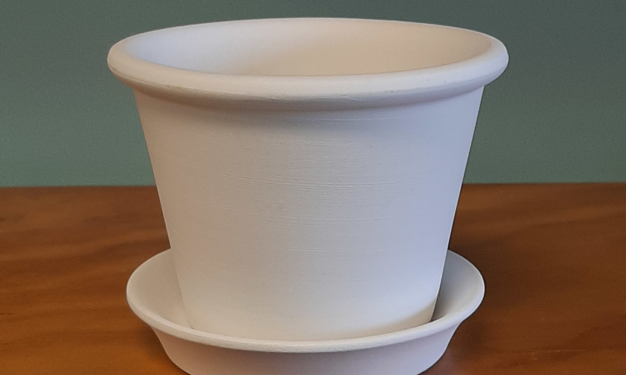 Flower Pot with Drip Tray