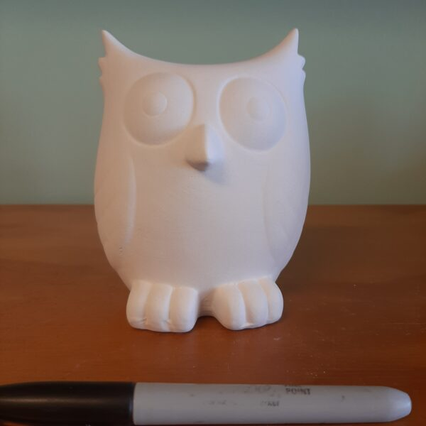 Screech Owl Bank
