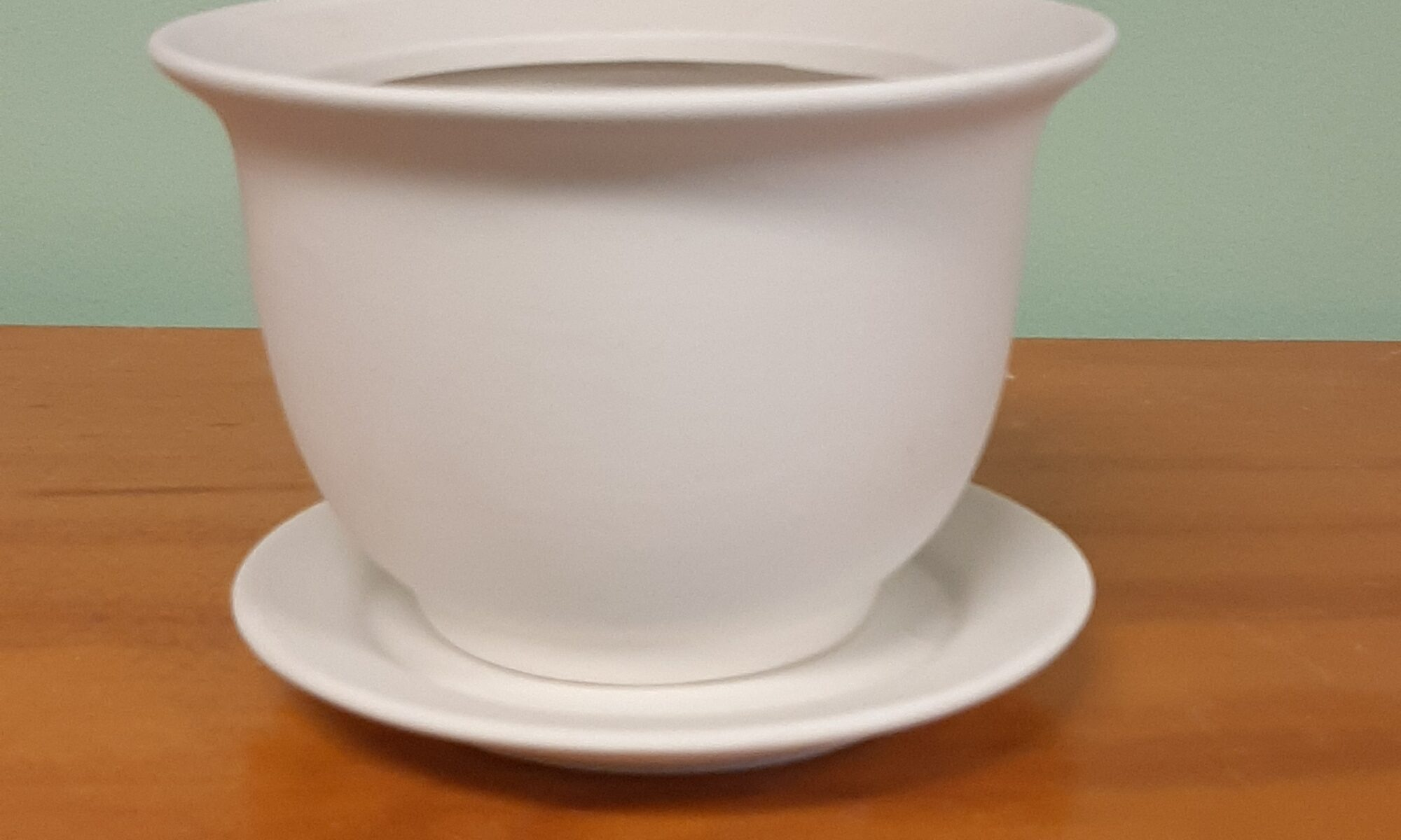 Planter with Drip Tray