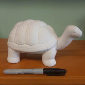Big Tango the Turtle