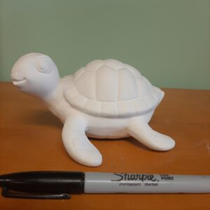 Sammy Sea Turtle